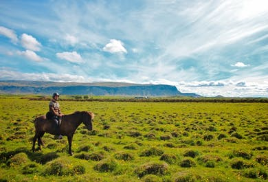 Horse Riding and Glacier Hiking Tour from Reykjavik   Easy difficulty