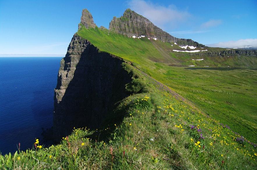 ホルンストランディル自然保護区にあるホルンビャルグの崖