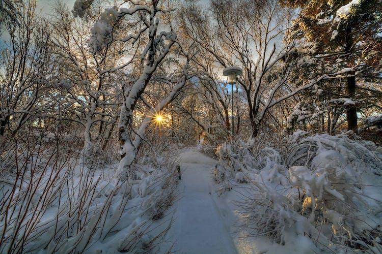 Winter in Reykjavík lends itself to many great photo opportunities.