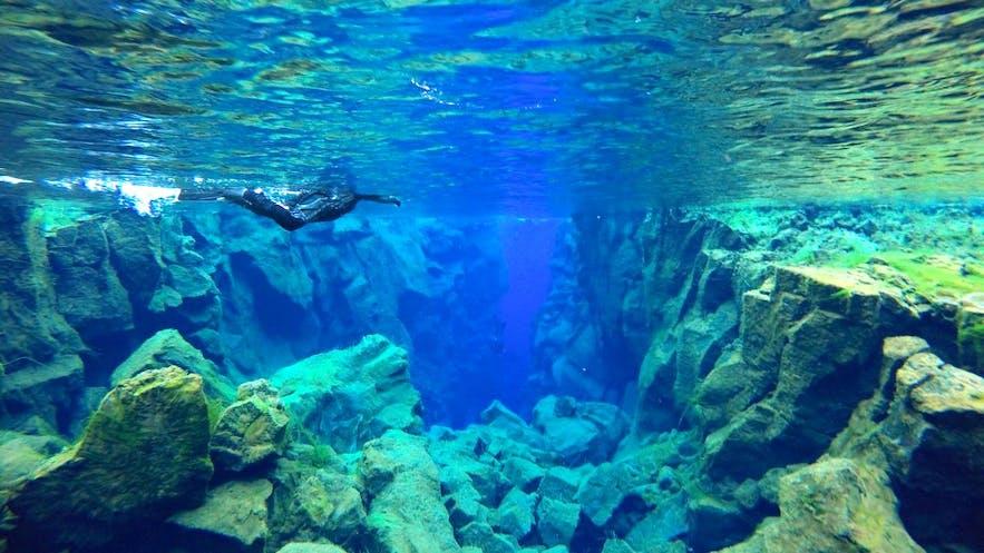 Abtauchen in Island - weite Unterwassersicht garantiert