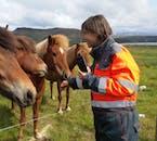 レイキャビクからATVツアーに参加し、途中にアイスランドホースと触れ合う機会もある