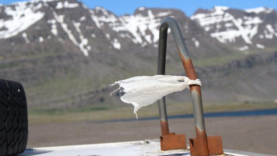 用済みのトイレットペーパーが強風に飛ばされる