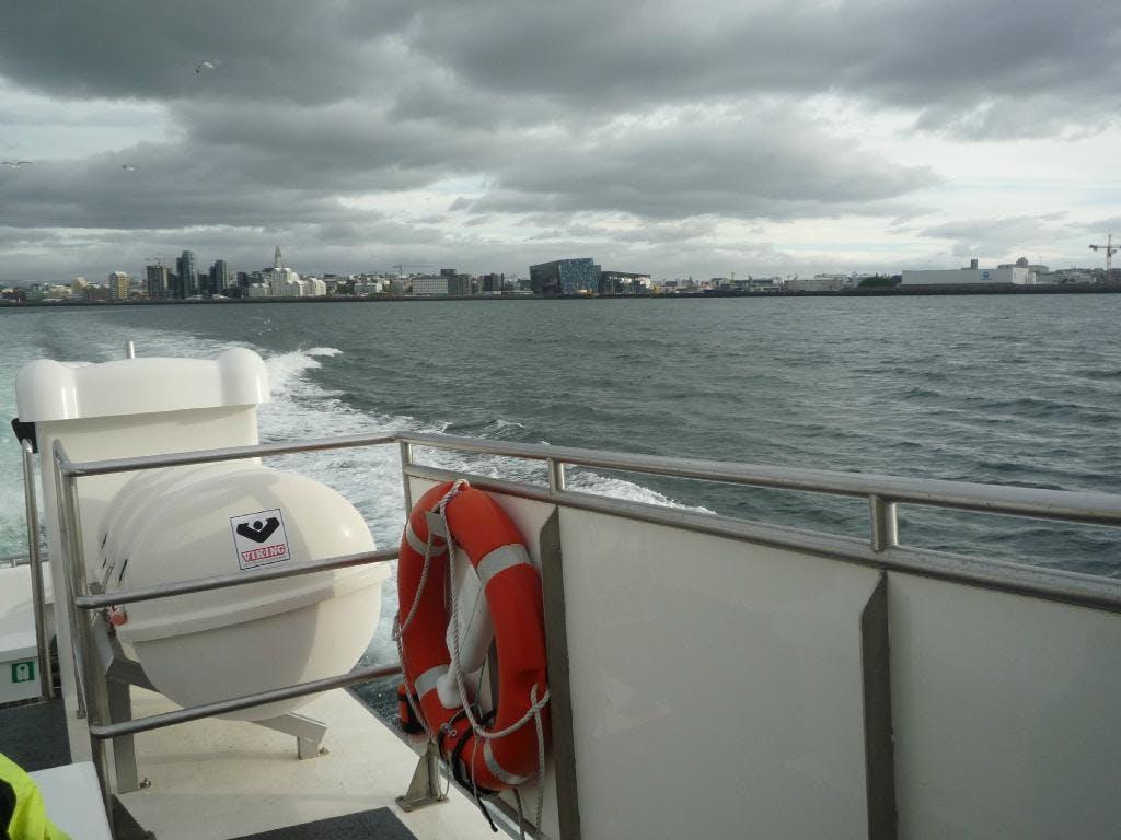 Walbeobachtung, deutschsprachig   ab Reykjavík
