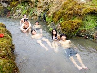 レイキャビク発|レイキャダルル渓谷でハイキングと川の温泉入浴