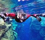 La plongée snorkeling avec tuba à Silfra exige que vous portiez une combinaison étanche, un masque et un tuba, des capuchons et des gants en néoprène et une paire de palmes.