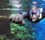 Faire de la plongée snorkeling à Silfra ne ressemble à aucun autre site de plongée du monde