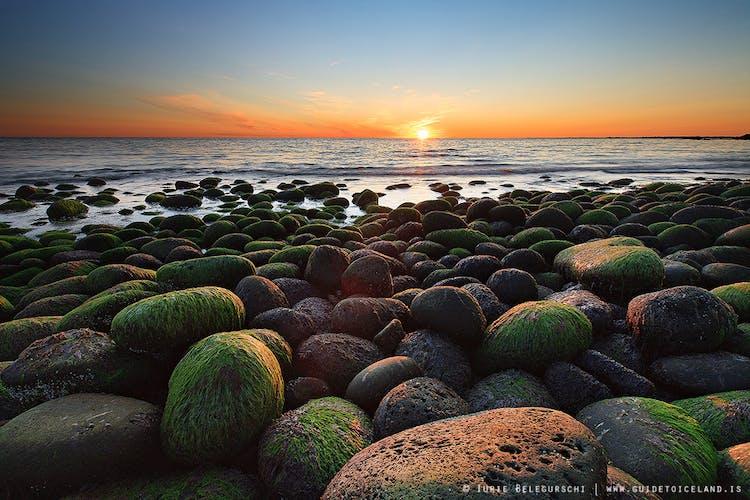 沈みいく太陽と、苔に覆われた石が転がる海岸