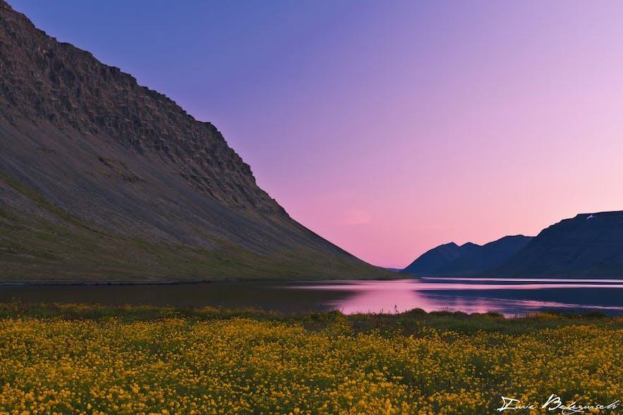 Icelandic summer colours