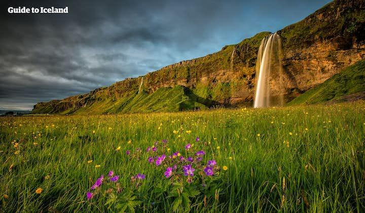 6 dagers leiebiltur   Den gylne sirkel, Den blå lagune og bresjøen Jökulsárlón