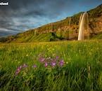 Einer der vom Schmelzwasser von Eyjafjallajökull gespeisten Flüsse fließt in den wunderschönen Wasserfall Seljalandsfoss.
