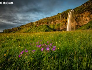 Одна из рек, несущих талые воды ледника Эйяфьядлайёкюдль, течет к водопаду Сельяландсфосс.