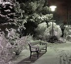 The parks of Reykjavík become frosted and magical as winter wraps the country in ice and snow.