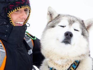 Sled Dog Ride Tour | Meet on Location