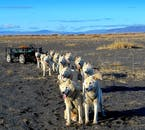 Riding a dog sled exposes you to awesome Icelandic landscapes.