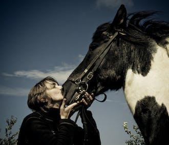 シルフラの泉でシュノーケリングツアー|乗馬体験付き