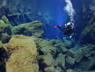 Diving Silfra & Horseback Tour