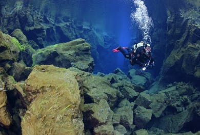Diving Silfra & Horseback Riding Tour