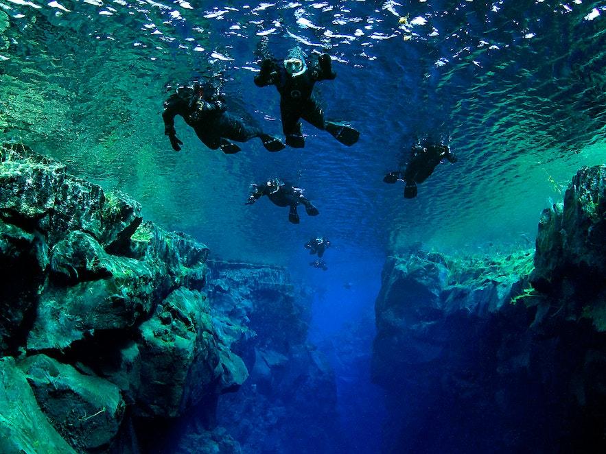 Snorkelen in de Silfra-kloof, die zich bevindt langs de Golden Circle-route, is een koude maar opwindende belevenis.