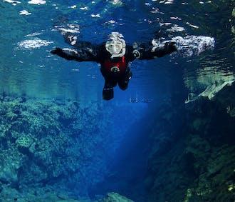 Snorkeling à Silfra et Cercle d'Or