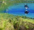 ブルラグーンとも呼ばれるシルフラの最終地点では美しい青に満ちた世界が待っている