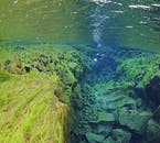 Silfra's underwater visibility is some of the best naturally occurring in the world.