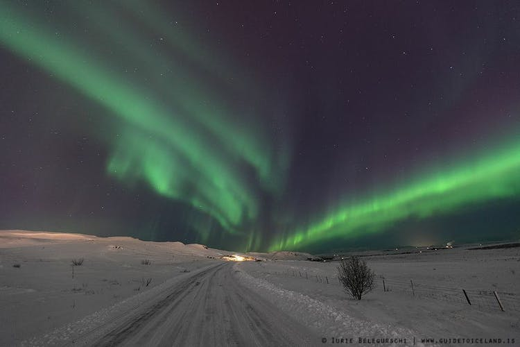 When visiting Iceland in the winter, keep an eye on the sky as you might spot the elusive Northern Lights.