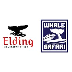 Eyjafjord Whale Watching logo