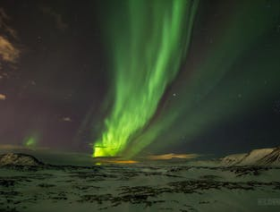 Sortie aurores polaires en bus depuis Reykjavik