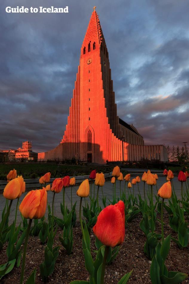 冰岛首都雷克雅未克哈尔格林姆斯大教堂