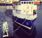 船の展望デッキからアイスランドに生息するクジラやイルカの観察を楽しもう!