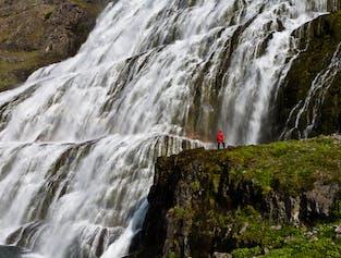 Crown Jewel Jeep Tour | Kjaran's Avenue & Dynjandi Waterfall