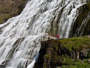 Nature thrill - Westfjords in 2 days