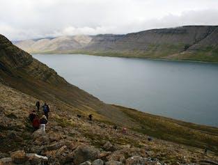 Westfjords Hiking Adventure   Trek Between Two Fjords