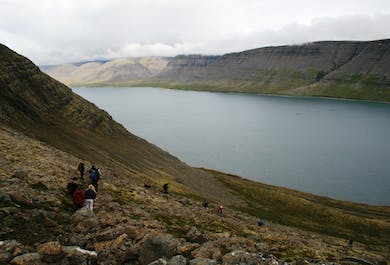 Westfjords Hiking Adventure | Trek Between Two Fjords