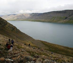 Westfjords Hiking Adventure | Trek Between Two Fjords