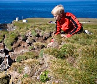 Falaises de Latrabjarg et Raudasandur | Visite des Fjords de l'Ouest depuis Patreksfjordur
