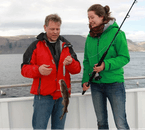 Hook yourself up dinner on a tour from the Westfjords.
