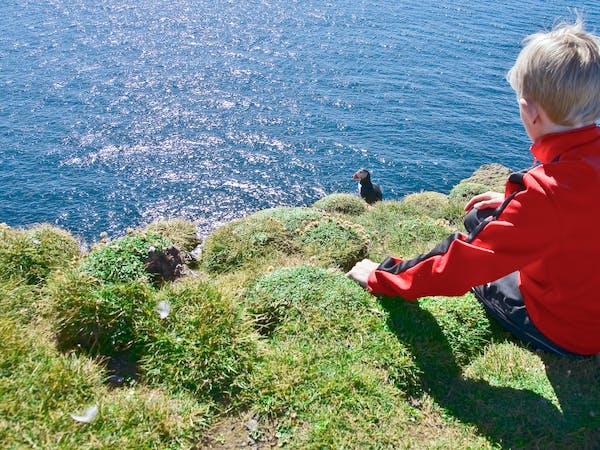 Westfjords Adventures