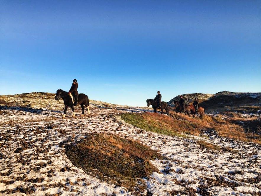 The Icelandic Horse volcanic landscape horse riding tour