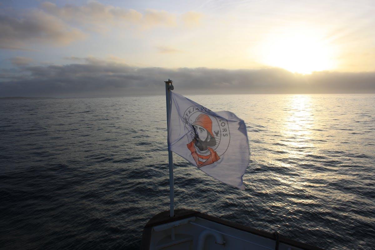 Reykjavik Sailors  hero image