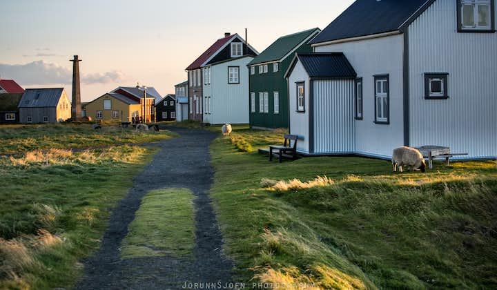 10-dniowa samodzielna wycieczka objazdowa organizowana latem po islandzkich Fiordach Zachodnich, Snaefellsnes i wyspie Flatey