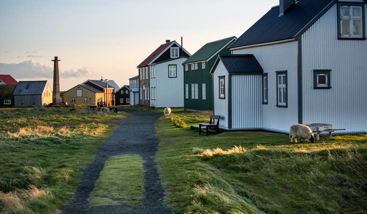Explore off-the-beaten-path locations like the remote Flatey island on a 10-day summer self-drive tour.
