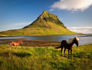 Snæfellsnes Peninsula on a Budget | Minibus Sightseeing Tour