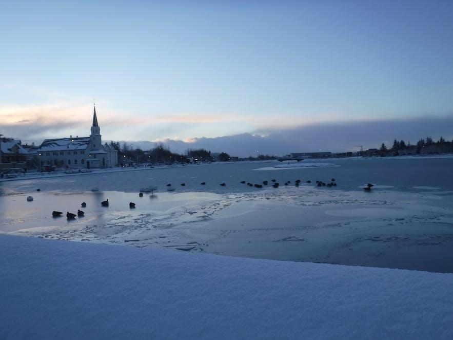Cosas que ver sin salir de Reykjavik