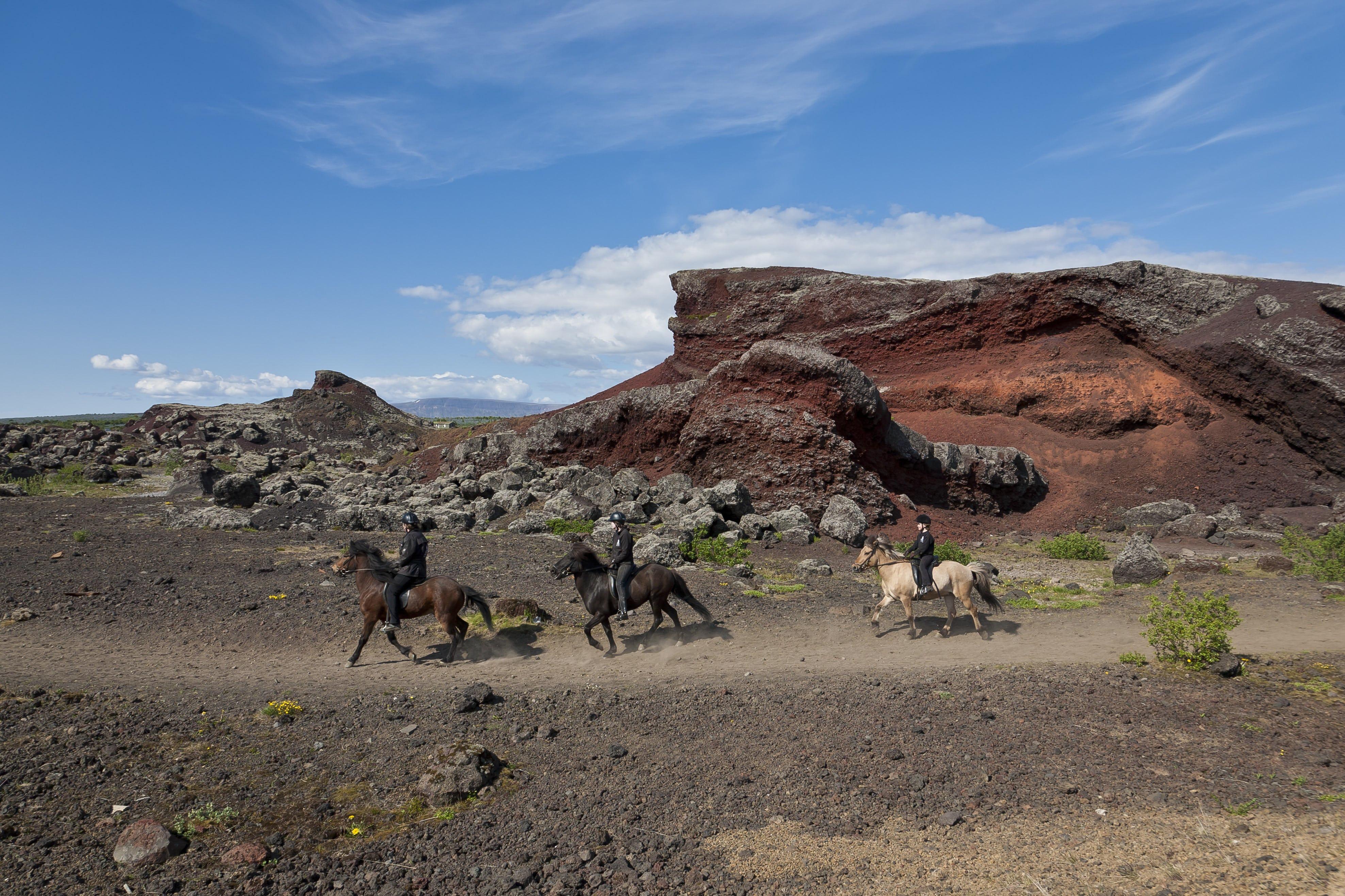 Icelandic horse riding through the crimson-coloured Rauðhólar outside Reykjavík.