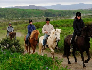 Horse riding & Caving
