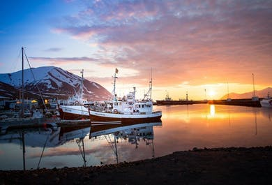 Observation de baleines depuis Dalvik   Nord de l'Islande