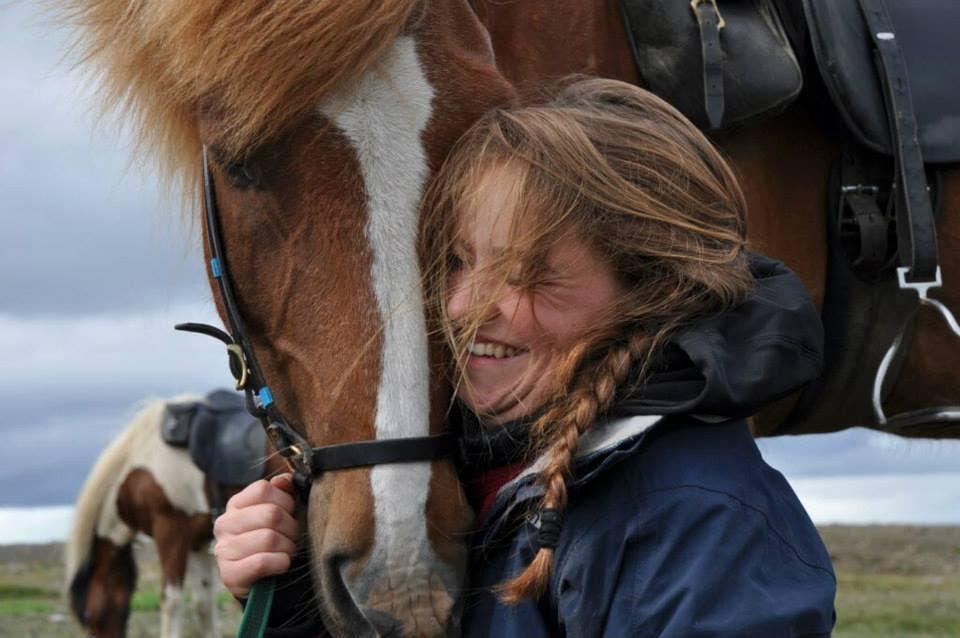Ausritt auf einem Islandpferd in Südisland