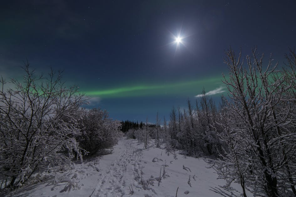 Northern Lights Minibus Tour Guide To Iceland