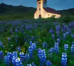 Tradycyjny islandzki kościół w noc przesilenia letniego.